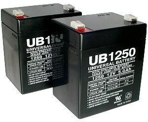 Razor W13111201003 Battery Set - Electrical - Razor E1